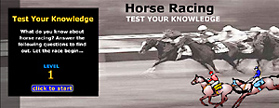 Flash: Horse Racing Quiz, Skoubo Graphics